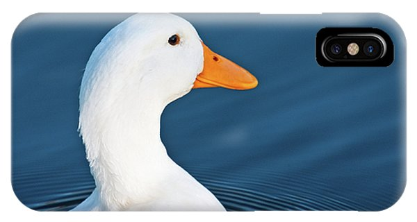 Come Swim With Me IPhone Case