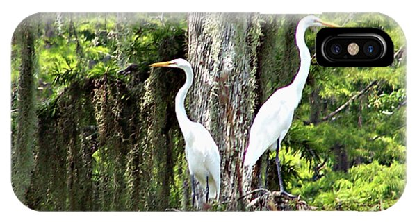 Great White Egrets IPhone Case