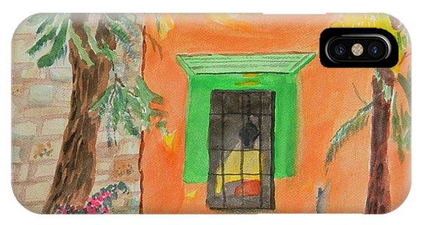 Oaxaca Mexico Church Colors IPhone Case