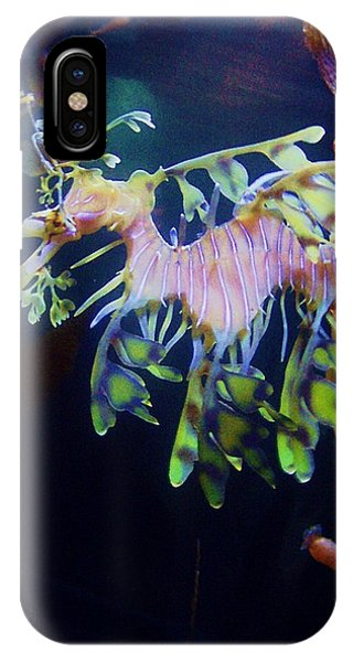 IPhone Case featuring the photograph Sea Horse Parade 2 by Deahn      Benware