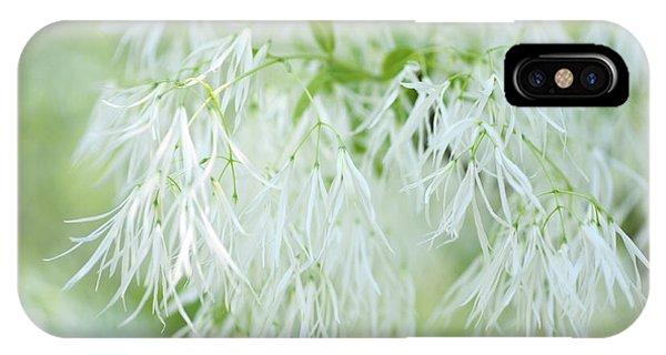 White Fringetree IPhone Case