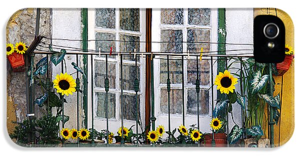 Sunflower Balcony IPhone 5 Case by Carlos Caetano