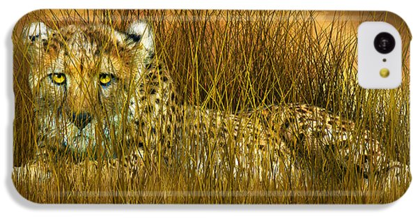 Cheetah - In The Wild Grass IPhone 5c Case