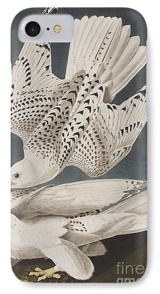 Illustration From Birds Of America IPhone 7 Case