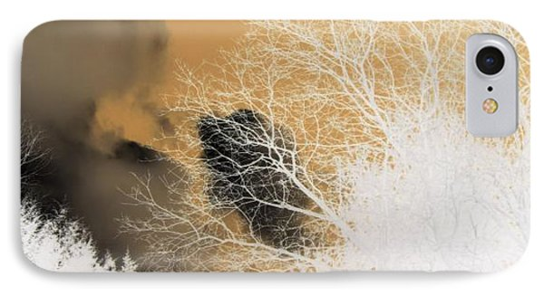 IPhone Case featuring the photograph Winters Gold  by Kristine Nora