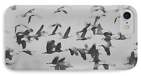 Flight Of The Sandhill Cranes IPhone Case