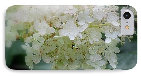 Hydrangea IPhone Case by France Laliberte