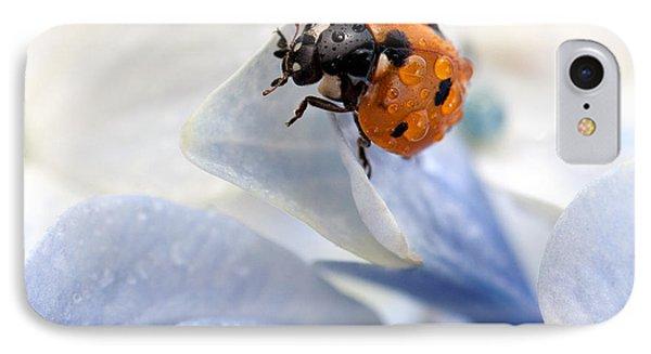Ladybug IPhone Case by Nailia Schwarz