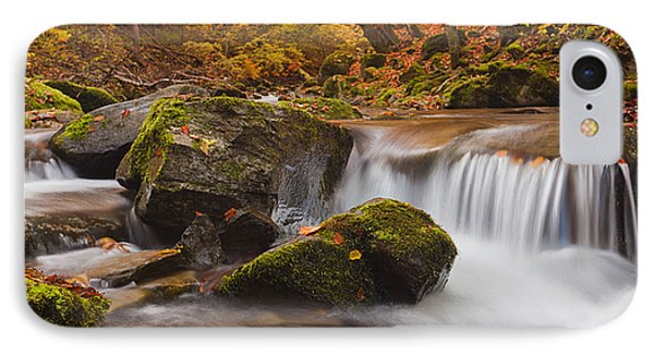 Autumn Forest Phone Case by Evgeni Dinev