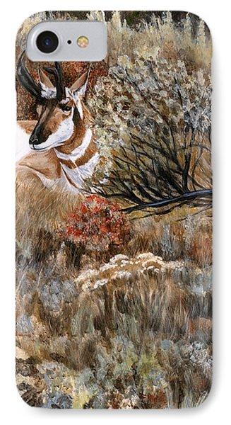 Autumn Splendor IPhone Case by Sheri Gordon