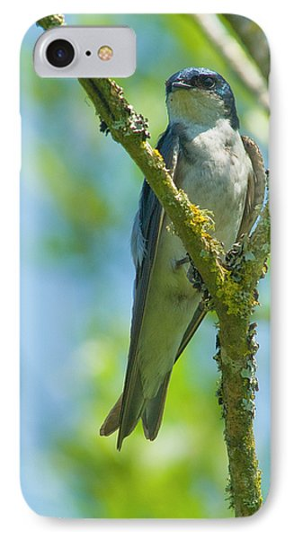 IPhone Case featuring the photograph Bird In Tree by Rod Wiens