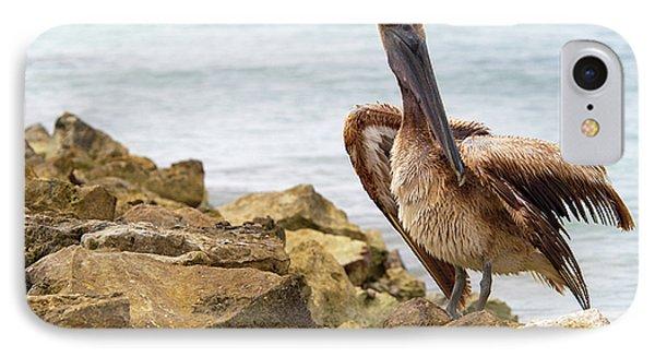 Brown Pelican IPhone Case by Sebastian Musial