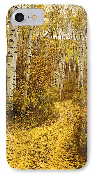 Country Road And Aspens 1 IPhone Case by Ron Dahlquist - Printscapes
