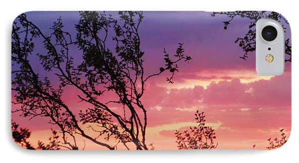 Creosote Sky IPhone Case by Suzette Kallen
