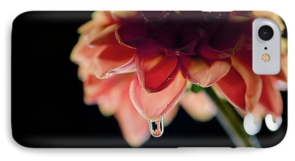Dahlia And Drop IPhone Case by Stefan Nielsen