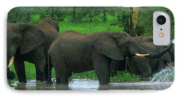 Elephant Shower IPhone Case