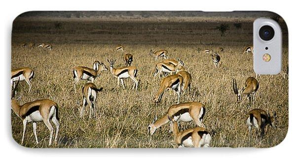 Herd Of Antelope Phone Case by Darcy Michaelchuk