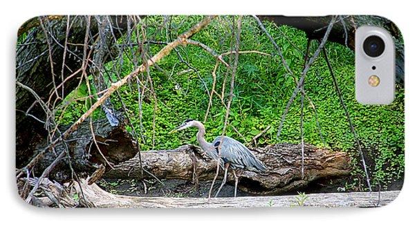 Heron Habitat IPhone Case by Sue Stefanowicz