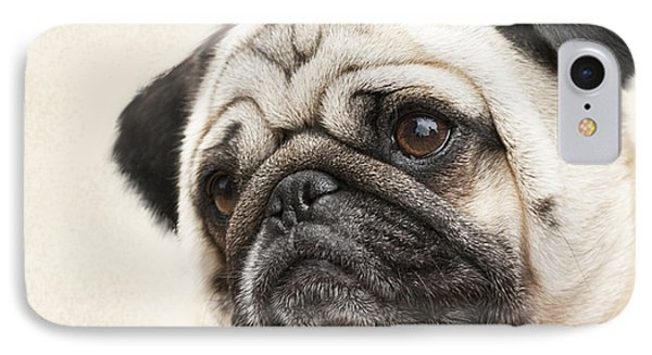 L-o-l-a Lola The Pug IPhone Case by Kathy Clark