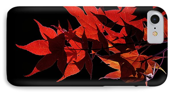 Leaves Of Red Phone Case by Heather Applegate