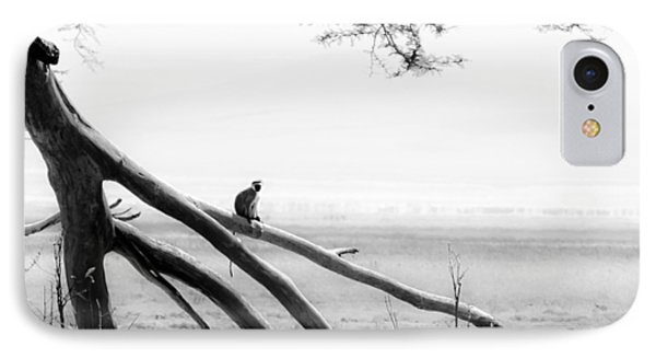Monkey Alone On A Branch IPhone Case by Darcy Michaelchuk