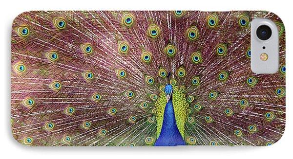 Peacock Phone Case by Carlos Caetano