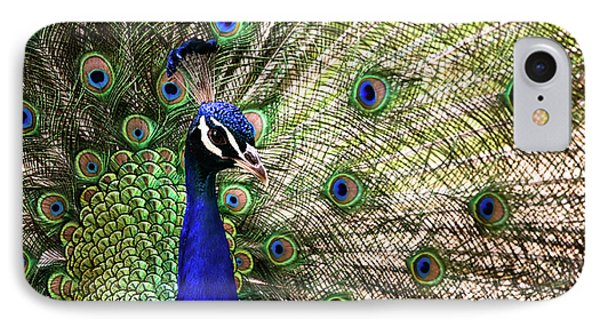 IPhone Case featuring the photograph Peacock by Stefan Nielsen