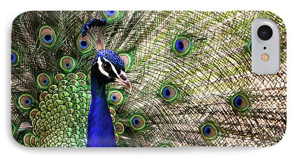 Peacock IPhone Case by Stefan Nielsen