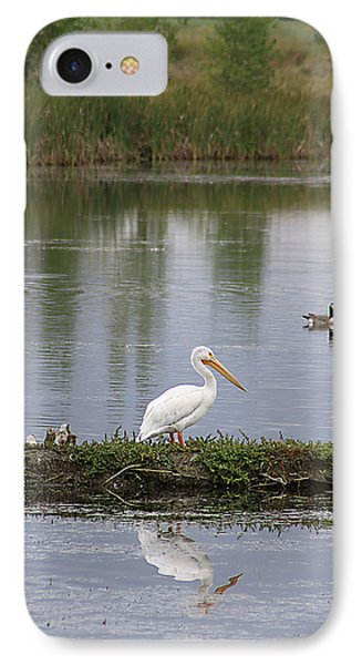 IPhone Case featuring the photograph Pelican Reflection by Alyce Taylor
