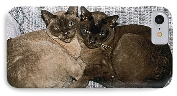 IPhone Case featuring the photograph Tonkinese Pals by Sally Weigand