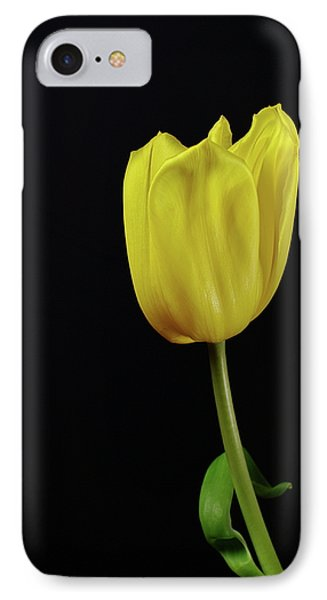 IPhone Case featuring the photograph Yellow Tulip by Dariusz Gudowicz