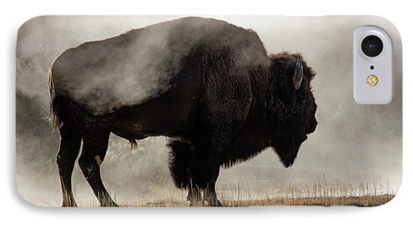 Bison In Mist, Upper Geyser Basin IPhone Case