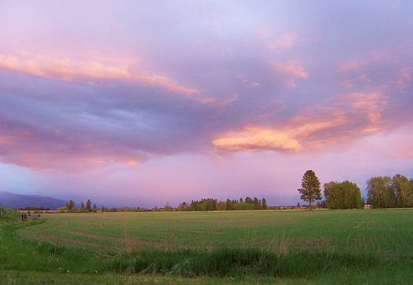 Montana Sunsets 3 Poster