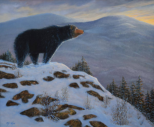 Hibernation Wall Art - Painting - Last Look Black Bear by Frank Wilson