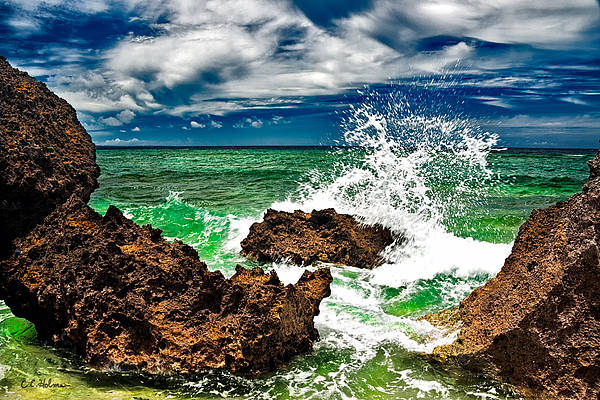 Photograph - Blue Meets Green by Christopher Holmes