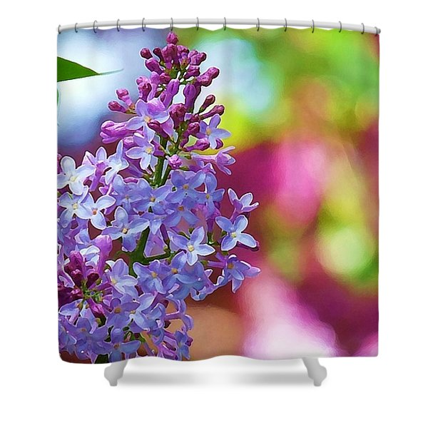 Lilacs 2012 Shower Curtain