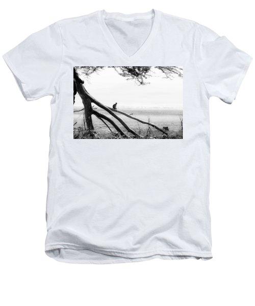 Monkey Alone On A Branch Men's V-Neck T-Shirt by Darcy Michaelchuk