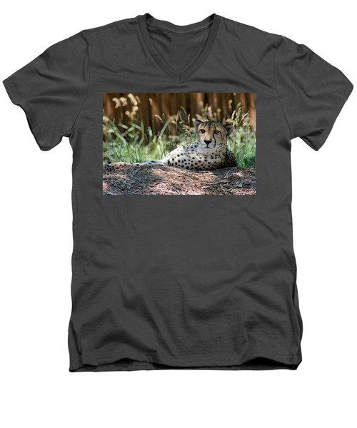 Amber Eyes Men's V-Neck T-Shirt by Alycia Christine