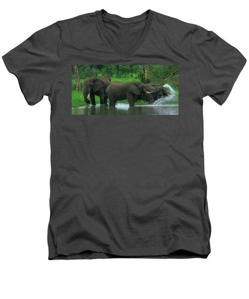 Elephant Shower Men's V-Neck T-Shirt