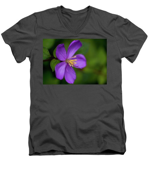Purple Flower Macro Men's V-Neck T-Shirt