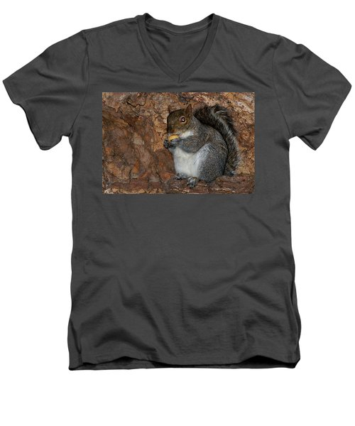 Men's V-Neck T-Shirt featuring the photograph Squirrell by Pedro Cardona