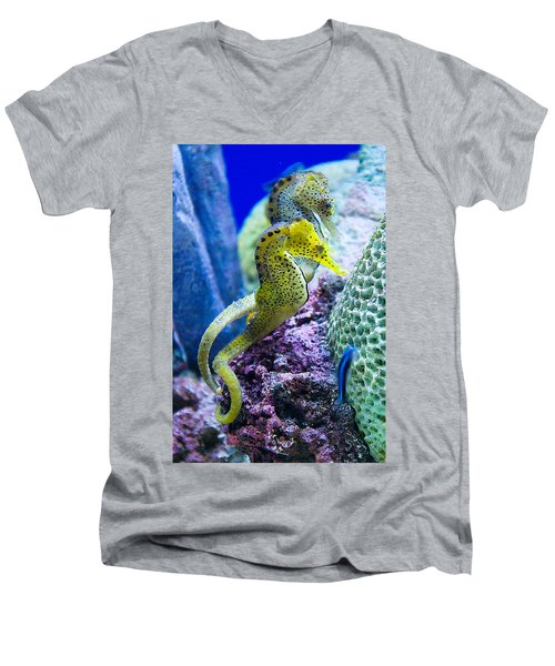 Colorful Seahorses Men's V-Neck T-Shirt by Jim And Emily Bush