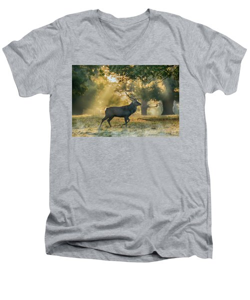 Men's V-Neck T-Shirt featuring the photograph Misty Walk by Scott Carruthers