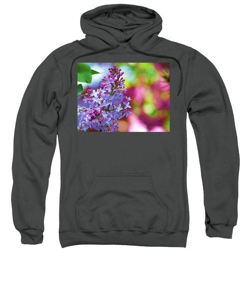 Lilacs 2012 Sweatshirt