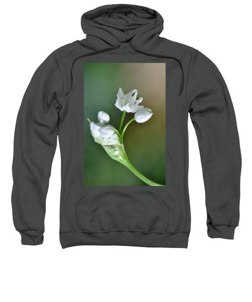 White Blossom 3 Sweatshirt