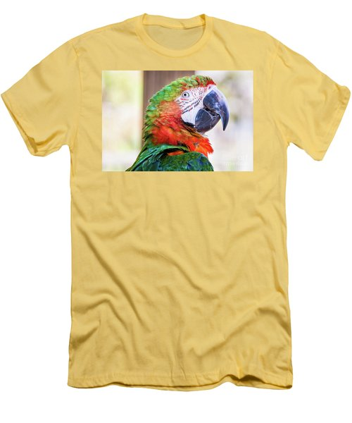 Parrot Men's T-Shirt (Slim Fit) by Stephanie Hayes