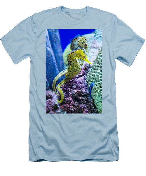 Colorful Seahorses Men's T-Shirt (Slim Fit) by Jim And Emily Bush