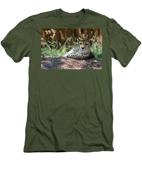 Amber Eyes Men's T-Shirt (Slim Fit) by Alycia Christine