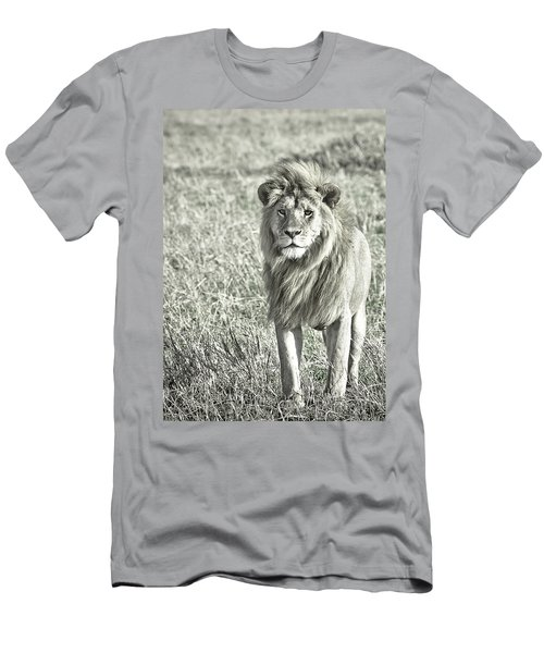 The King Stands Tall Men's T-Shirt (Slim Fit) by Darcy Michaelchuk