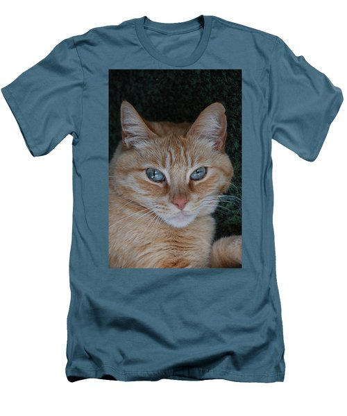 Fat Cats Of Ballard 5 Men's T-Shirt (Athletic Fit)